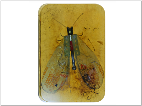 """""""Amber Insect 4"""" © Fred Lisaius 2011"""