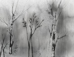 Grove, charcoal dust drawing