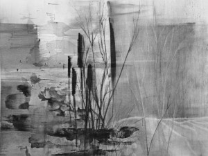 Listening for Blackbirds, charcoal drawing