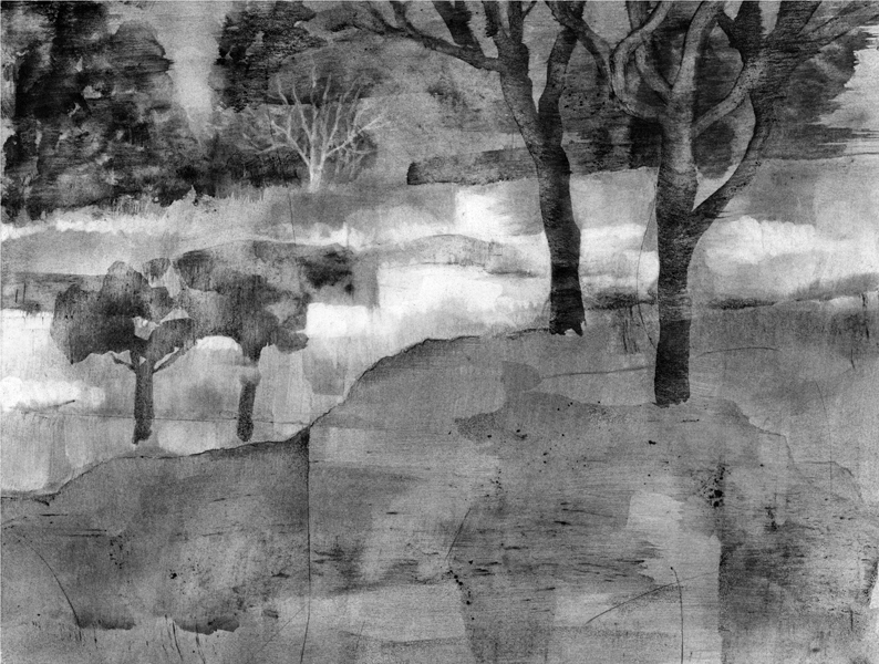 The Back Forty, charcoal dust and water (SOLD)