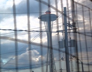 Needle-WIth-blue-Sky