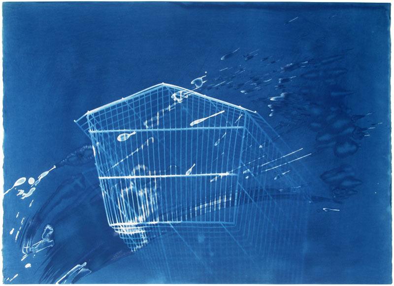 Bird_Cage_One_Cyanotype