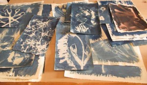 Cassandra_Cyanotypes_On_Various_Papers