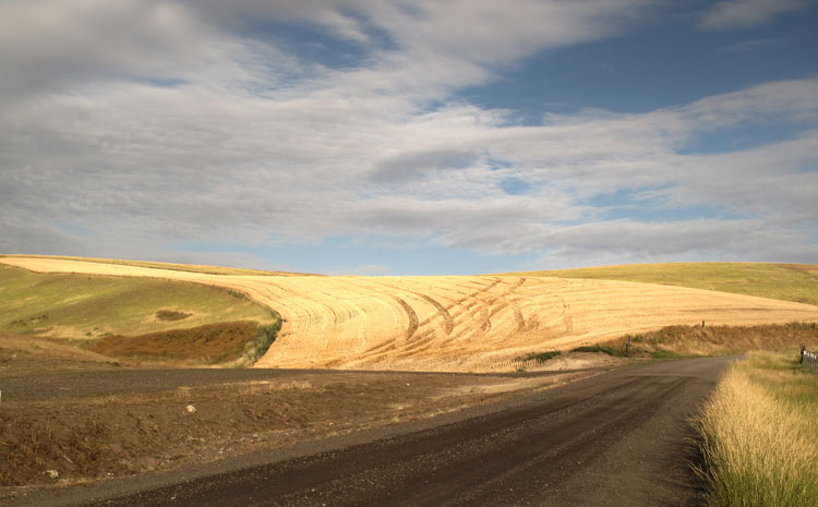 Palouse-Road