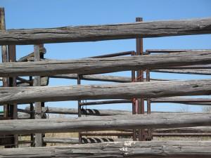 Pole_Fence