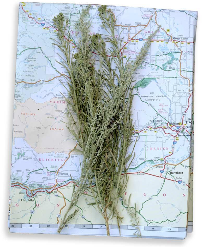 Sage_On_Map_EasternWashington