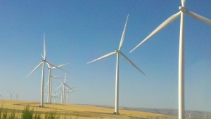 The_SciFi_Windmills_of_The_Palouse