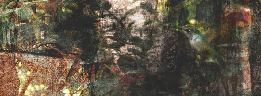 October-Hummingbird-Collage