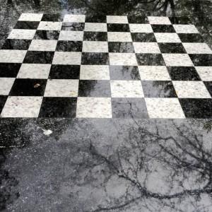 Chess-In-Washington-Square