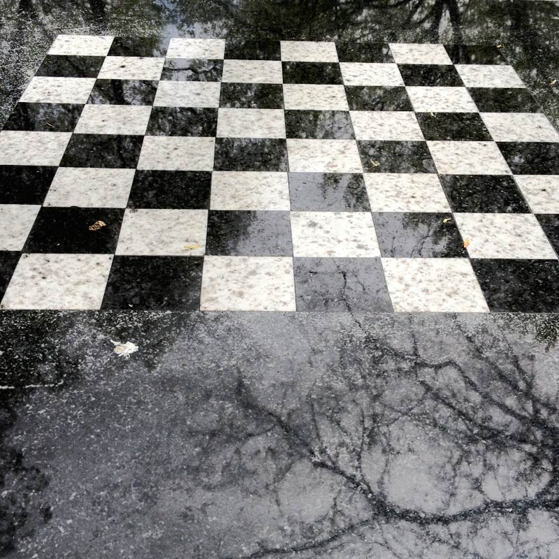 Chess-In-Washington-Square