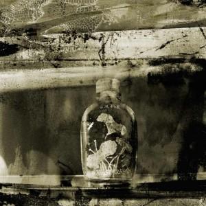 Through A Glass Darkly Dragonfly Snuffbottle print