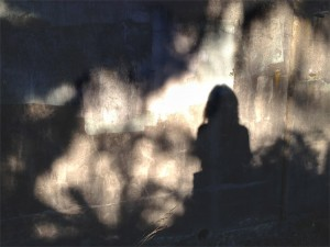 Self Portrait In Dark And Light