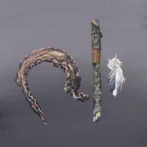 Stick Feather Octopus Specimen Study
