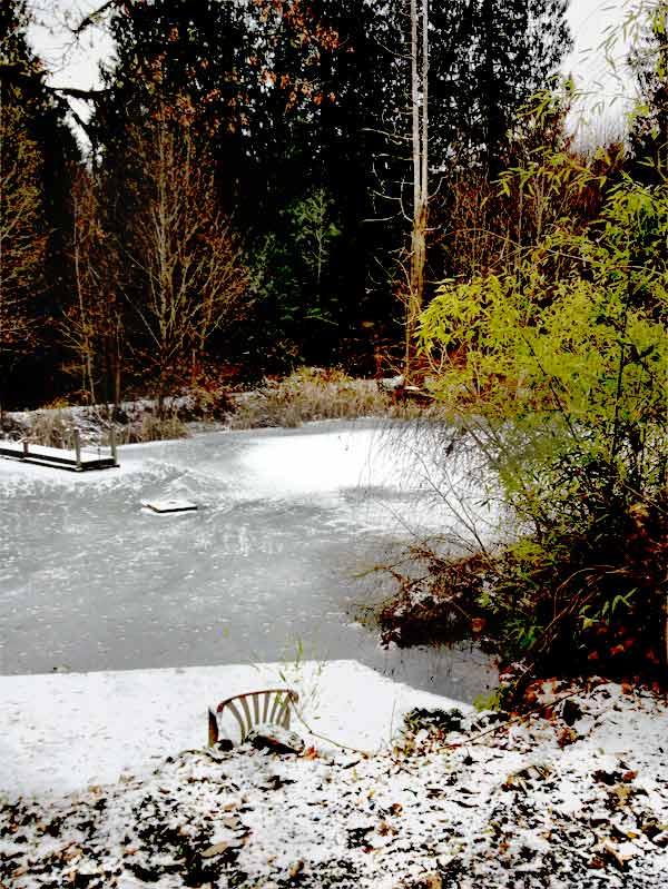 Pond Vista