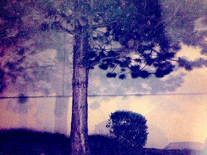 Hokusai At St. Vincent de Paul