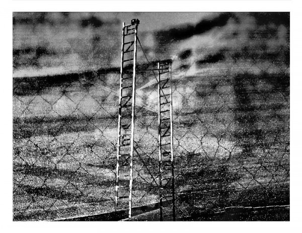 GreenLadderInBlack-and-WHite