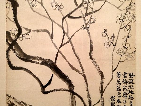 Plum-blossoms-interrupted