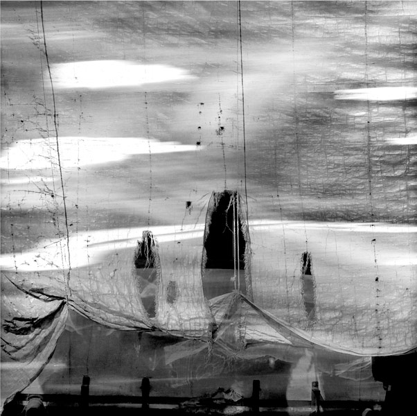 The Tarp Archival Pigment Print_Iskra
