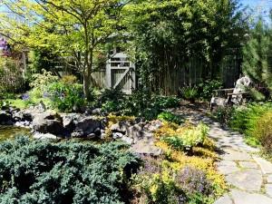 Bird_Habitat_Seattle_garden