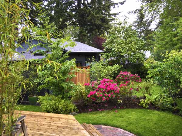 In defense of the back yard urban density and urban eden for Seattle backyard cottage
