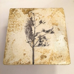 Mixed media on Plaster, study of a leaf by Iskra
