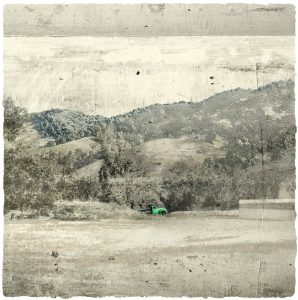 Potter Valley Green Truck Print by Iskra