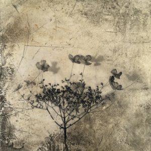 Flowers for Goethe, mixed media on plaster