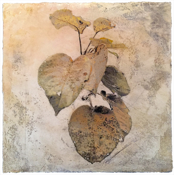 Pyrus, mixed media on plaster by Iskra