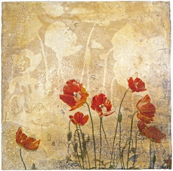 Red poppies on Venetian plaster by Iskra