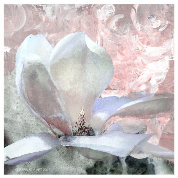 Iskra Fine Art magnolia print