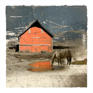 Horse and Barn print by Iskra
