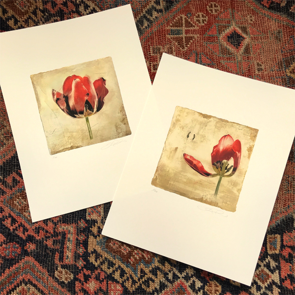 Two Tulip Prints by Iskra
