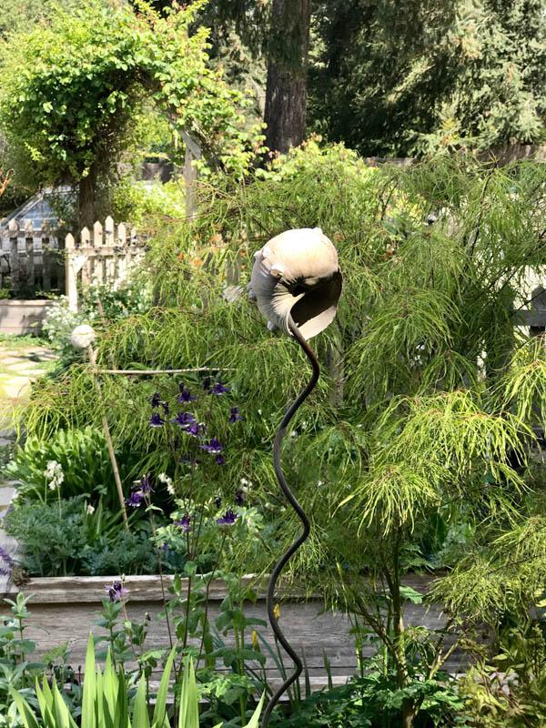 Vashon garden