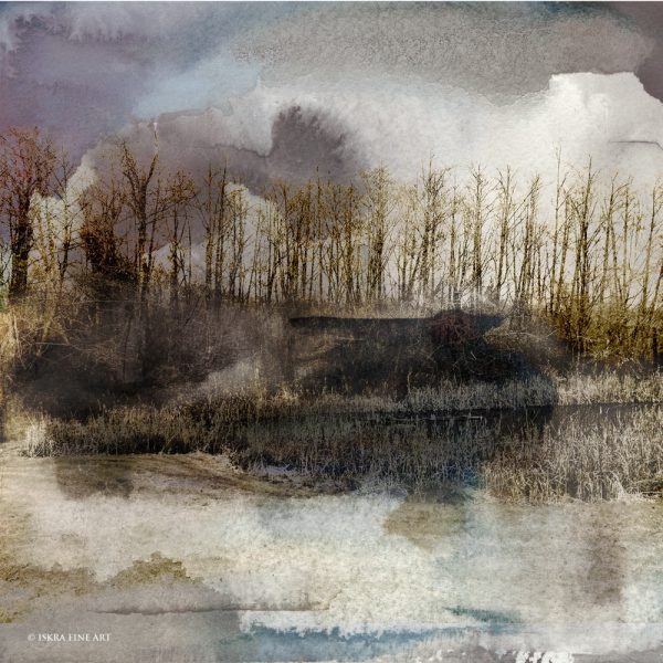 Whidbey Marsh landscape