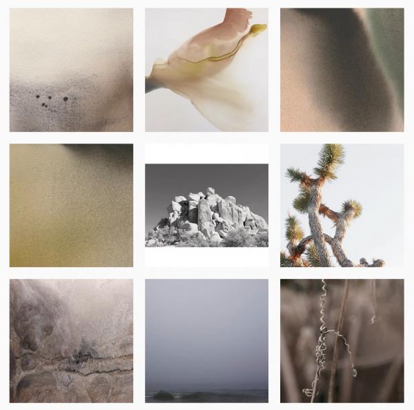 Cindy Hilliard Instagram