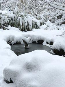 On frozen pond Iskra