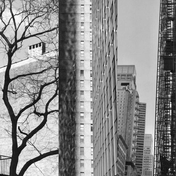 architecture collage study iskra
