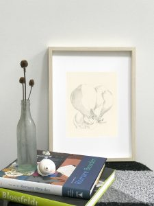 Magnolia drawing in Ikea Hovsta frame
