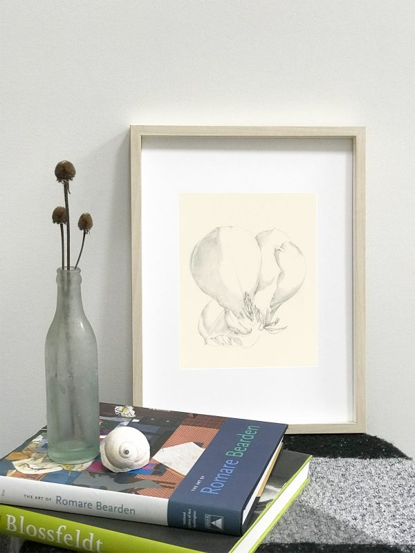 Magnolia drawing in Ikea Hovsta frame