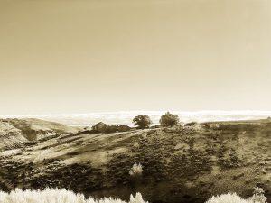 Canyon Drive Sepia Photo