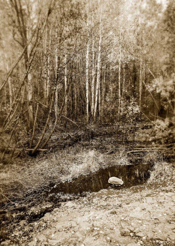 Stillpoint Photograph Iskra